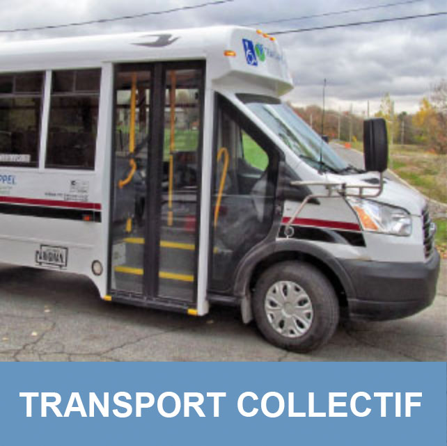 Trans-Appel | Transport collectif